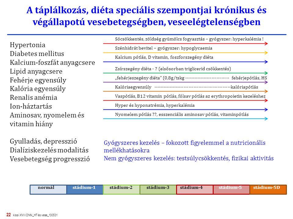 22 kissi XVIII DNN_HT és vese_130531 A táplálkozás, diéta speciális szempontjai krónikus és végállapotú vesebetegségben, veseelégtelenségben normál st