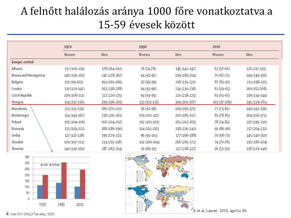 4 kissi XVIII DNN_HT és vese_130531 A felnőtt halálozás aránya 1000 főre vonatkoztatva a 15-59 évesek között Rajaratnam JK et al. Lancet 2010. április