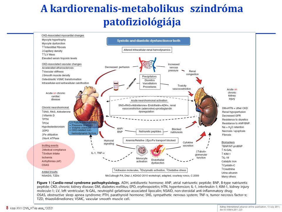8 kissi XVIII DNN_HT és vese_130531 A kardiorenalis-metabolikus szindróma patofiziológiája Systolic and diastolic dysfunction or both