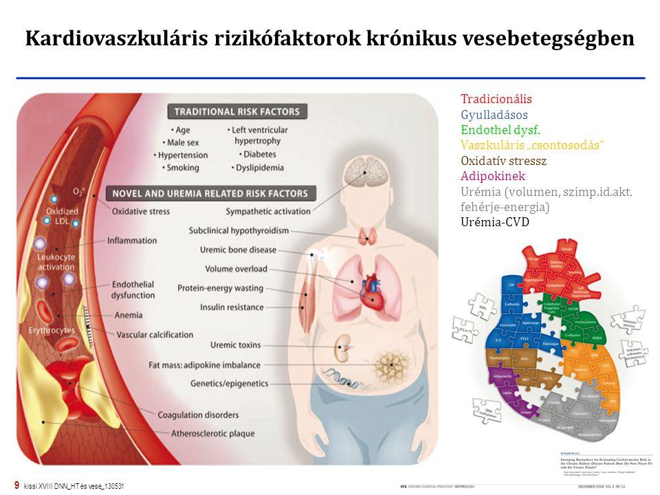 """9 kissi XVIII DNN_HT és vese_130531 Kardiovaszkuláris rizikófaktorok krónikus vesebetegségben Tradicionális Gyulladásos Endothel dysf. Vaszkuláris """"cs"""