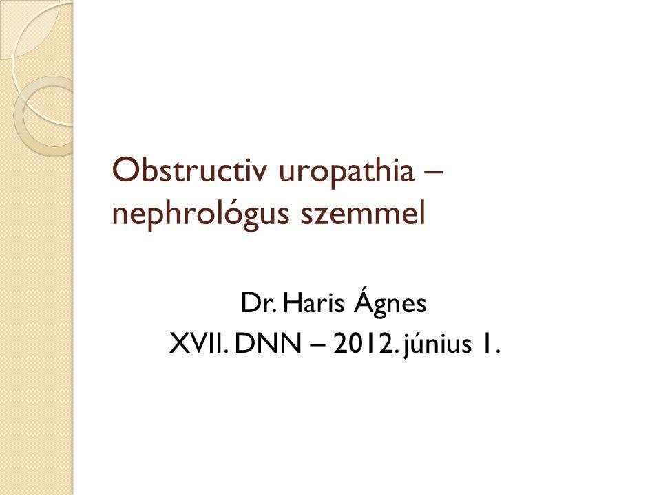 Obstructiv uropathia – nephrológus szemmel Dr. Haris Ágnes XVII. DNN – 2012. június 1.