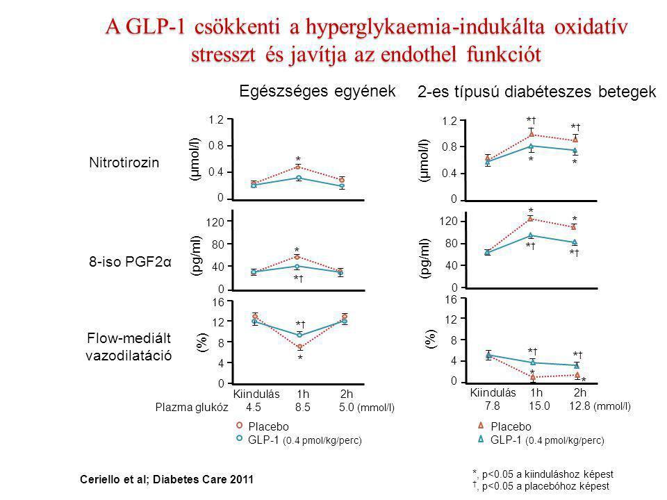 * * A GLP-1 csökkenti a hyperglykaemia-indukálta oxidatív stresszt és javítja az endothel funkciót Ceriello et al; Diabetes Care 2011 Nitrotirozin 8-i