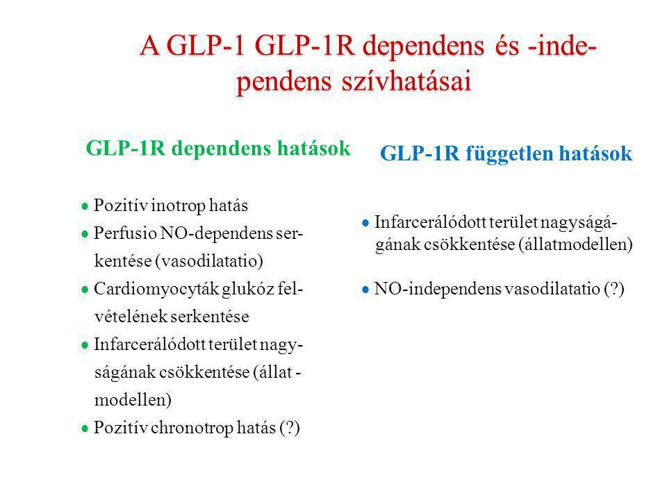 A GLP-1 GLP-1R dependens és -inde- pendens szívhatásai A GLP-1 GLP-1R dependens és -inde- pendens szívhatásai GLP-1R dependens hatások  Pozitív inotr