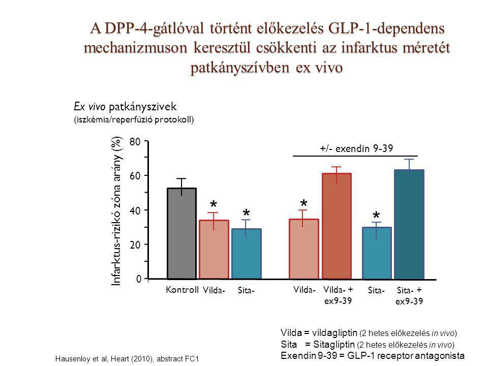 Ex vivo patkányszivek (iszkémia/reperfúzió protokoll) A DPP-4-gátlóval történt előkezelés GLP-1-dependens mechanizmuson keresztül csökkenti az infarkt