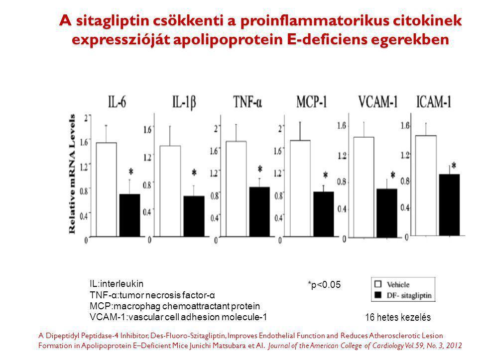 A sitagliptin csökkenti a proinflammatorikus citokinek expresszióját apolipoprotein E-deficiens egerekben *p<0.05 A Dipeptidyl Peptidase-4 Inhibitor,