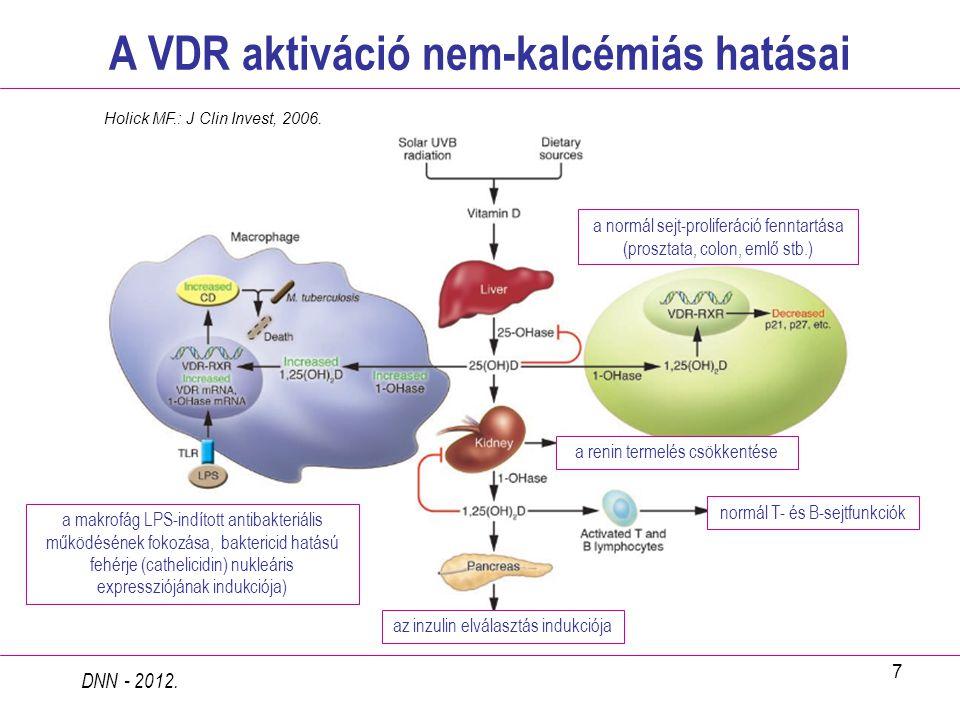 7 A VDR aktiváció nem-kalcémiás hatásai DNN - 2012. a normál sejt-proliferáció fenntartása (prosztata, colon, emlő stb.) a makrofág LPS-indított antib
