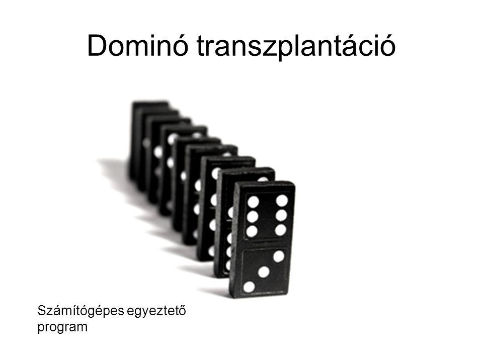 Dominó transzplantáció Számítógépes egyeztető program