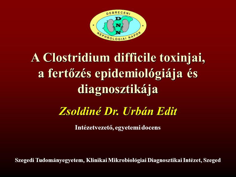 A Clostridium difficile toxinjai, a fertőzés epidemiológiája és diagnosztikája Szegedi Tudományegyetem, Klinikai Mikrobiológiai Diagnosztikai Intézet, Szeged Zsoldiné Dr.