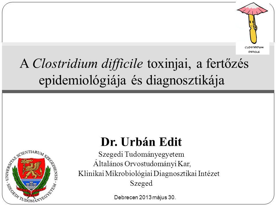  Binary toxin – szerepe ismeretlen/vitatott  Binary toxin cytotoxikus aktivitás in vitro (Sundryial et al.