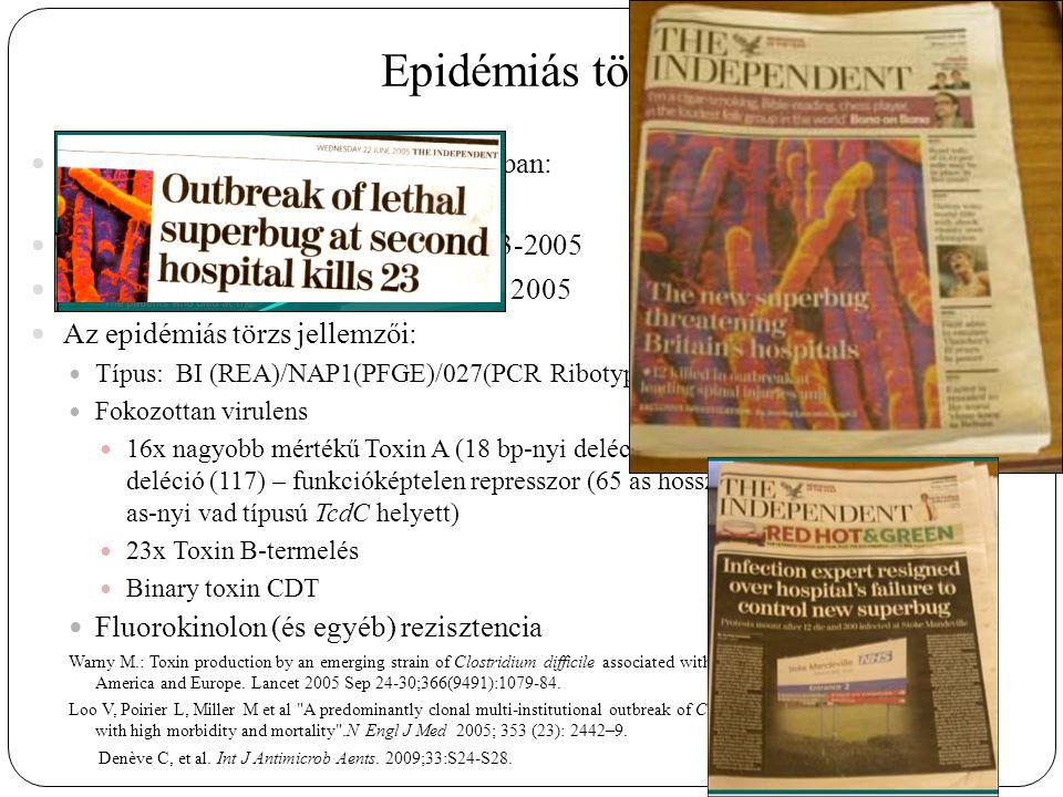 Epidémiás törzs 2003 június 04: két outbreak Kanadában: Montreal: 36, Calgary: 89 haláleset UK: Stoke Mandewille Hospital 2003-2005 Hollandia: Harderwijk és Amersfoort 2005 Az epidémiás törzs jellemzői: Típus: BI (REA)/NAP1(PFGE)/027(PCR Ribotyping) Fokozottan virulens 16x nagyobb mértékű Toxin A (18 bp-nyi deléció (pozíció 330-347), 1 bp-nyi deléció (117) – funkcióképtelen represszor (65 as hosszúságú N- terminális – 231 as-nyi vad típusú TcdC helyett) 23x Toxin B-termelés Binary toxin CDT Fluorokinolon (és egyéb) rezisztencia Warny M.: Toxin production by an emerging strain of Clostridium difficile associated with outbreaks of severe disease in North America and Europe.