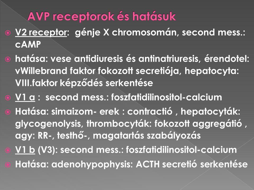  V2 receptor: génje X chromosomán, second mess.: cAMP  hatása: vese antidiuresis és antinatriuresis, érendotel: vWillebrand faktor fokozott secretió