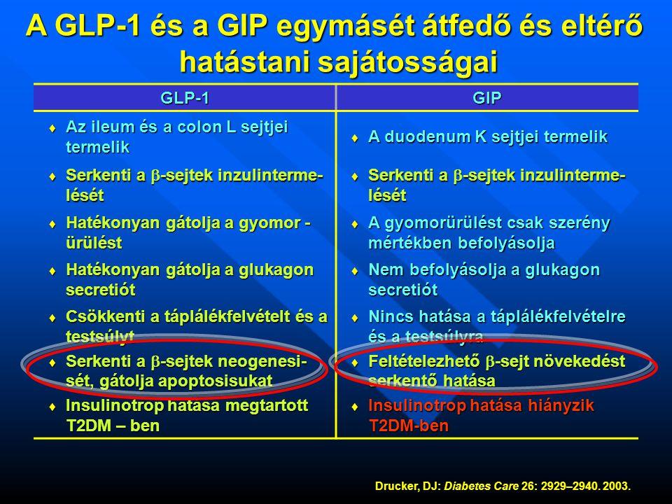 A GLP-1 és a GIP egymásét átfedő és eltérő hatástani sajátosságai hatástani sajátosságaiGLP-1GIP ♦ Az ileum és a colon L sejtjei termelik ♦ A duodenum