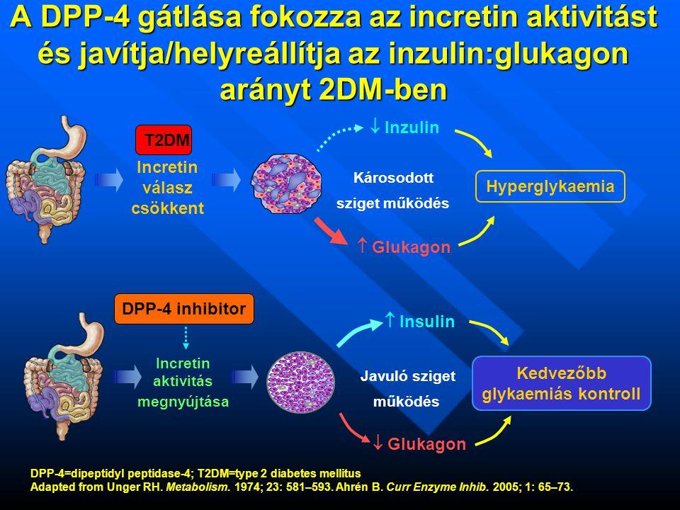 A DPP-4 gátlók különböznek egymástól Kémiai szerkezetben Kémiai szerkezetben - a liganddal (DPP-4) való kötődés sajátosságai - a liganddal (DPP-4) való kötődés sajátosságai Farmakokinetikai / farmakodinamikai tulajdonságokban Farmakokinetikai / farmakodinamikai tulajdonságokban - hatástartam - hatástartam - dózis egyenérték - dózis egyenérték Metabolizmusukban Metabolizmusukban hepatikus vs.