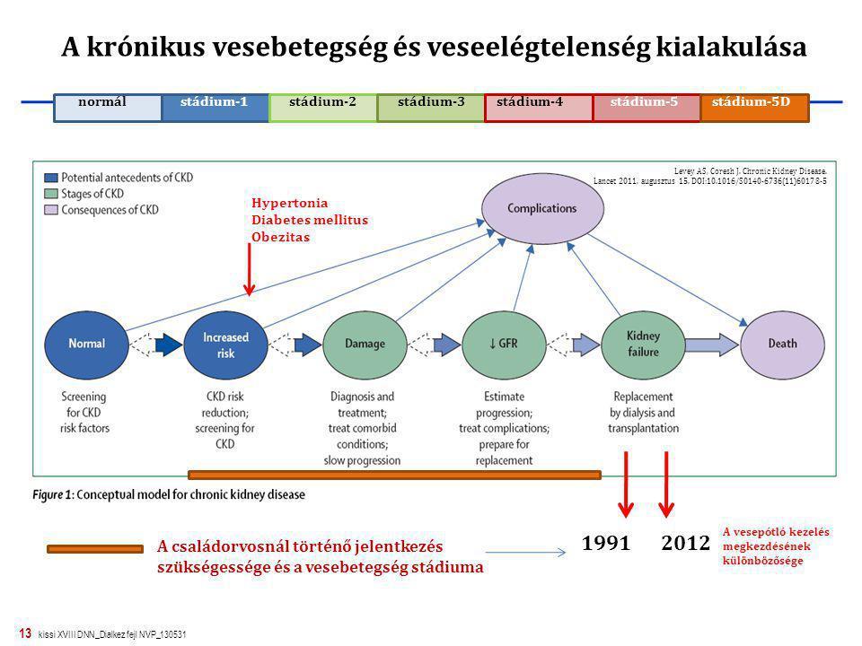 13 kissi XVIII DNN_Dialkez fejl NVP_130531 A krónikus vesebetegség és veseelégtelenség kialakulása Hypertonia Diabetes mellitus Obezitas Levey AS, Cor