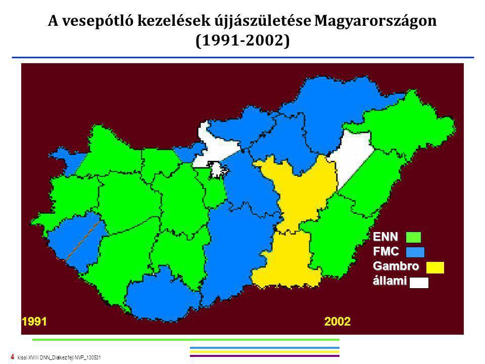 4 kissi XVIII DNN_Dialkez fejl NVP_130531 ENNFMCGambroállami 19912002 A vesepótló kezelések újjászületése Magyarországon (1991-2002)