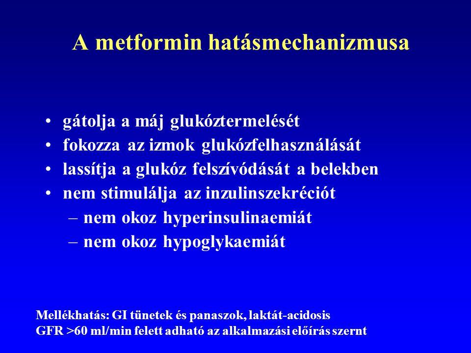 A metformin hatásmechanizmusa gátolja a máj glukóztermelését fokozza az izmok glukózfelhasználását lassítja a glukóz felszívódását a belekben nem stim