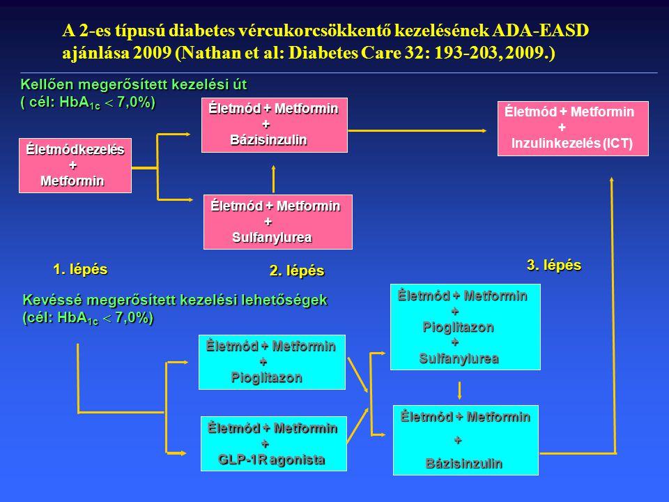 Szulfonilurea-terápia lehetőségei Glibenclamid – alapgyógyszer volt, szerepét betöltötte Gliclazid – előnyös haemorheológiai tulajdonság Glipizid – rövid felezési idő Gliquidon – nem a vesén át ürül Glimepirid – nincs előnytelen CV hatás Mellékhatás: hypoglykaemia, testsúly nő Glibenclamid – alapgyógyszer volt, szerepét betöltötte Gliclazid – előnyös haemorheológiai tulajdonság Glipizid – rövid felezési idő Gliquidon – nem a vesén át ürül Glimepirid – nincs előnytelen CV hatás Mellékhatás: hypoglykaemia, testsúly nő