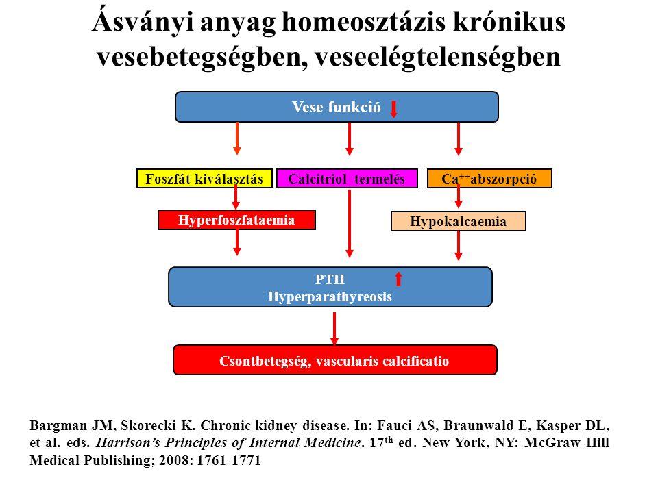 Ásványi anyag homeosztázis krónikus vesebetegségben, veseelégtelenségben Vese funkció PTH Hyperparathyreosis Csontbetegség, vascularis calcificatio Fo