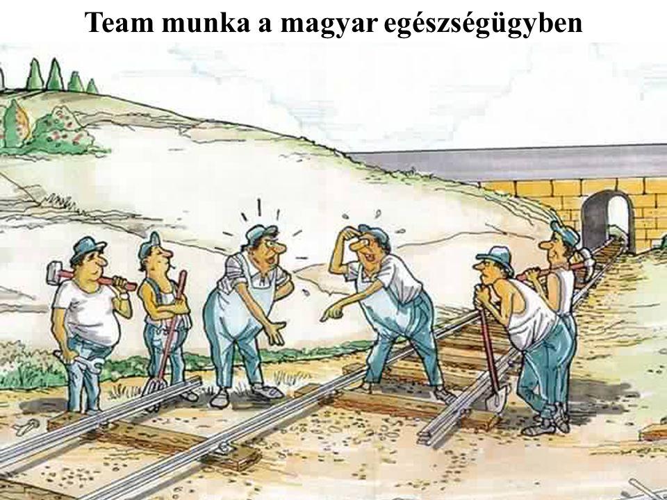 A gondozási-team munka előnyei Javuló klinikai állapot Javuló életminőség.
