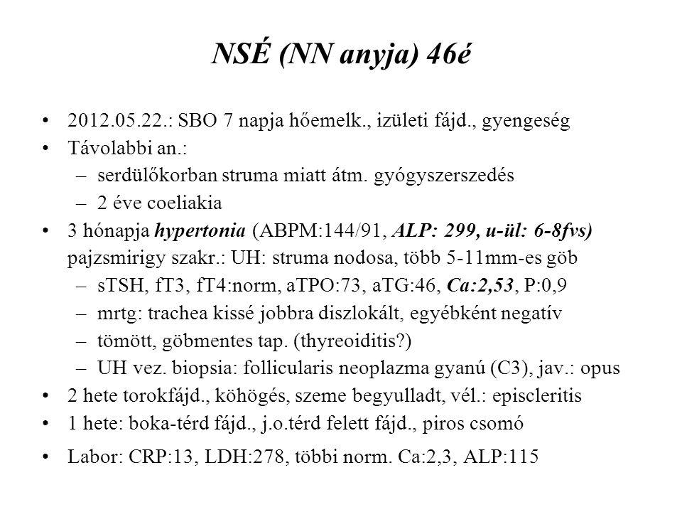NSÉ (NN anyja) 46é 2012.05.22.: SBO 7 napja hőemelk., izületi fájd., gyengeség Távolabbi an.: –serdülőkorban struma miatt átm. gyógyszerszedés –2 éve