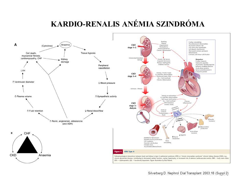 Silverberg D. Nephrol Dial Transplant 2003;18 (Suppl 2): ii7-ii12. KARDIO-RENALIS ANÉMIA SZINDRÓMA