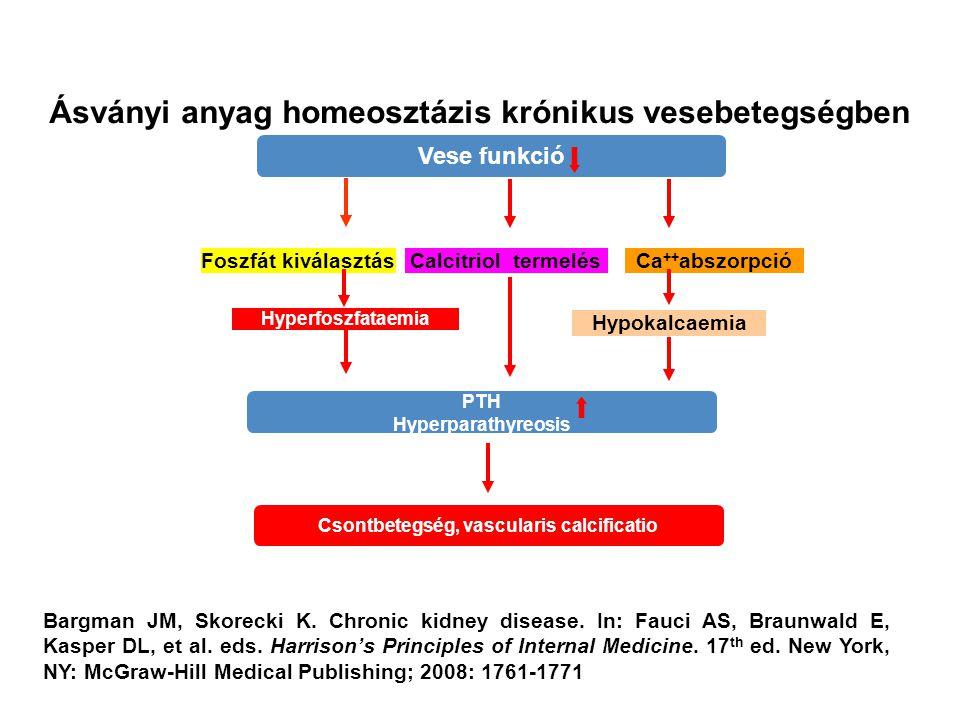 Ásványi anyag homeosztázis krónikus vesebetegségben Vese funkció PTH Hyperparathyreosis Csontbetegség, vascularis calcificatio Foszfát kiválasztás Hyp