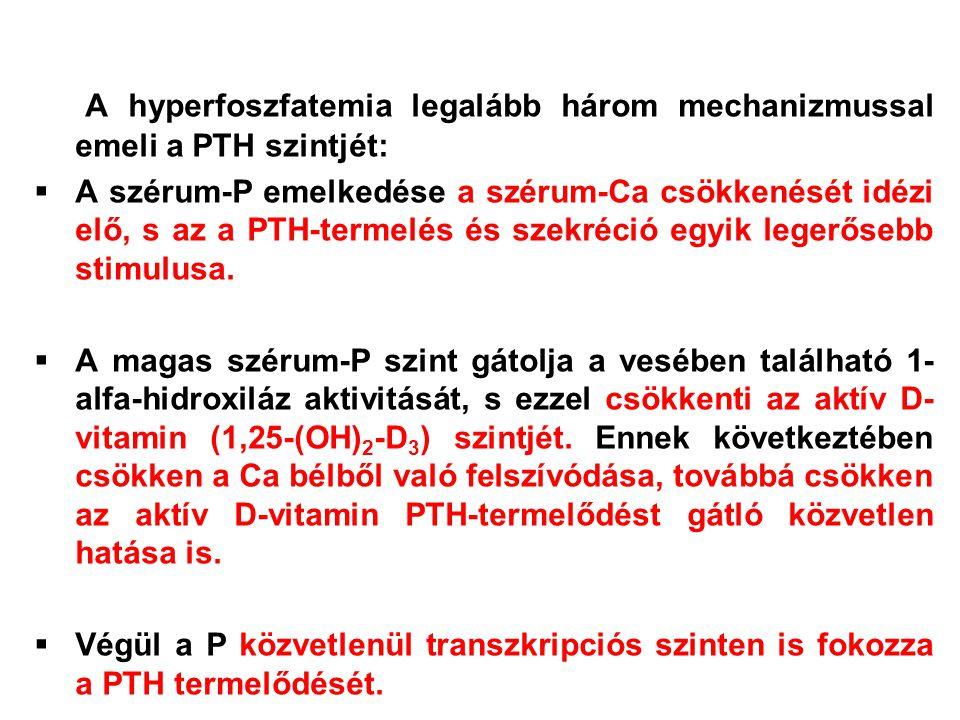 A hyperfoszfatemia legalább három mechanizmussal emeli a PTH szintjét:  A szérum-P emelkedése a szérum-Ca csökkenését idézi elő, s az a PTH-termelés