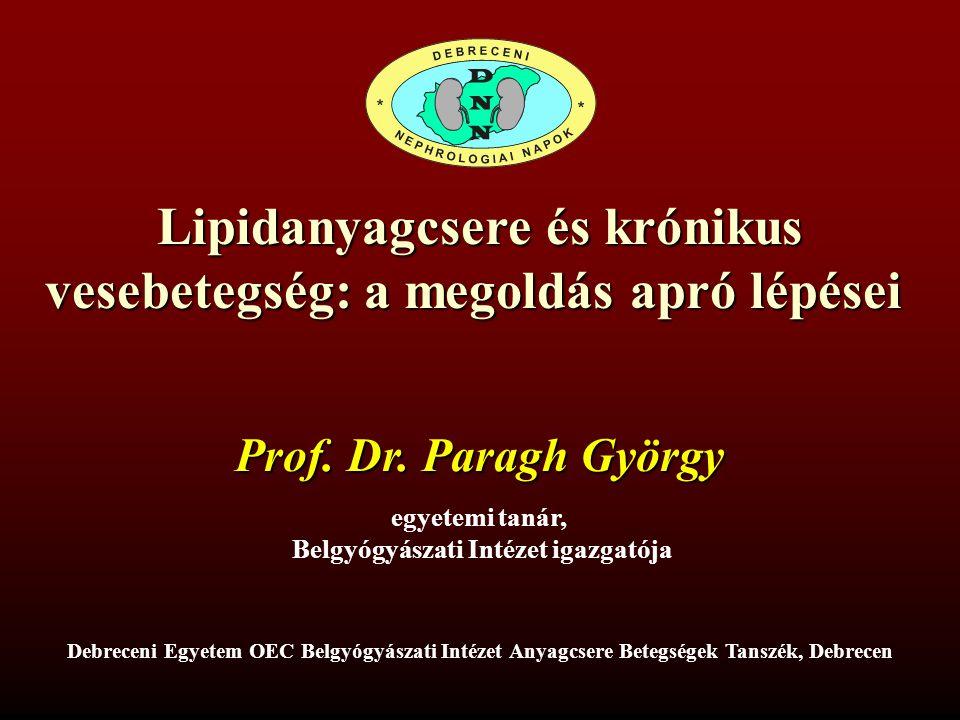 Lipidanyagcsere és krónikus vesebetegség: a megoldás apró lépései vesebetegség: a megoldás apró lépései Prof.