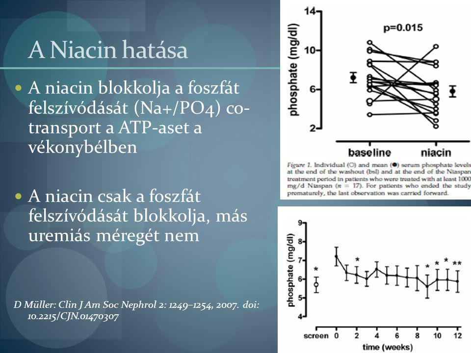 A Niacin hatása A niacin blokkolja a foszfát felszívódását (Na+/PO4) co- transport a ATP-aset a vékonybélben A niacin csak a foszfát felszívódását blo