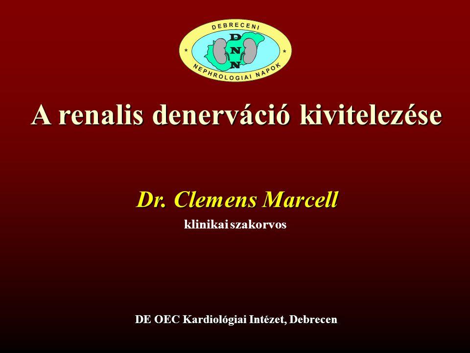 A renalis denerváció kivitelezése DE OEC Kardiológiai Intézet, Debrecen klinikai szakorvos Dr. Clemens Marcell