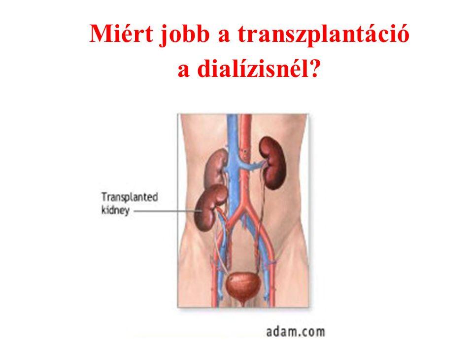 Miért jobb a transzplantáció a dialízisnél?
