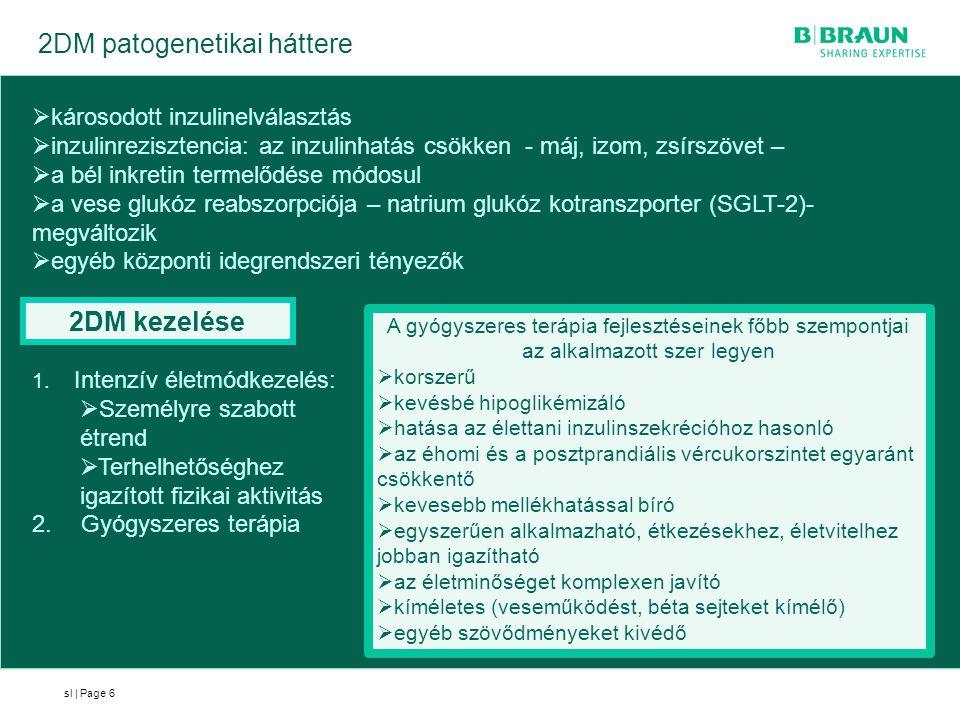sl | Page 2DM patogenetikai háttere 6  károsodott inzulinelválasztás  inzulinrezisztencia: az inzulinhatás csökken - máj, izom, zsírszövet –  a bél