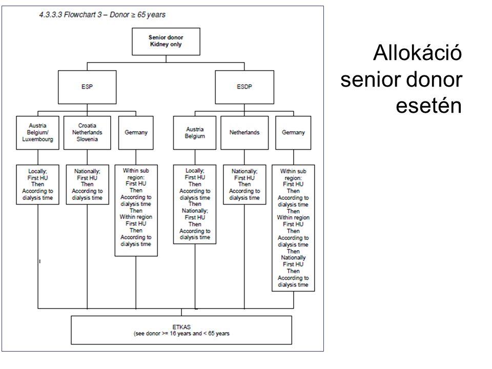 Allokáció senior donor esetén
