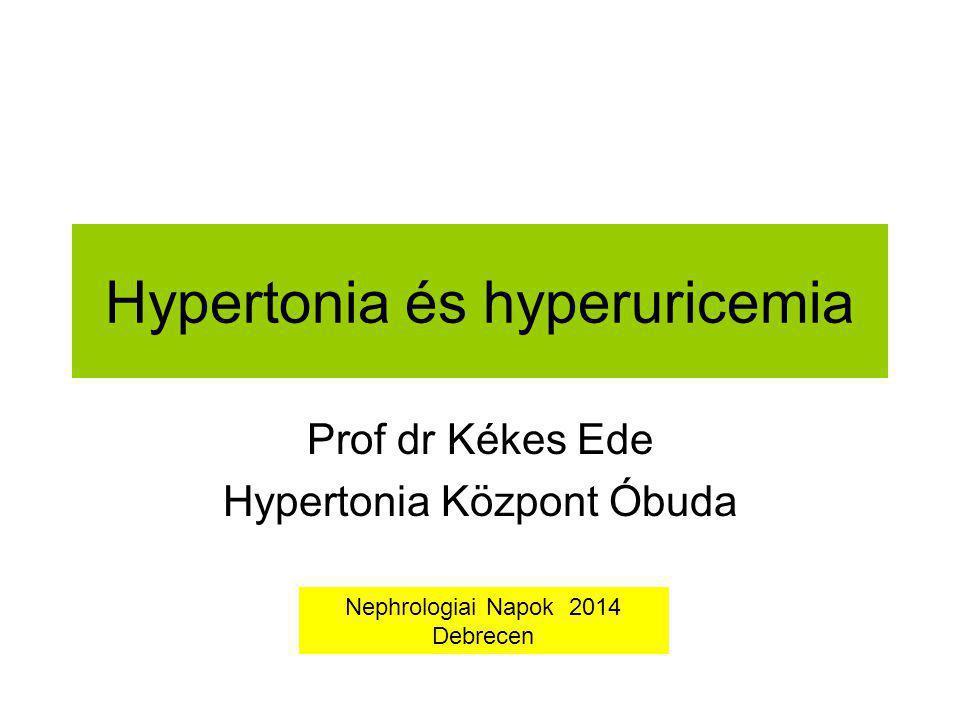 Hypertonia és hyperuricemia Prof dr Kékes Ede Hypertonia Központ Óbuda Nephrologiai Napok 2014 Debrecen