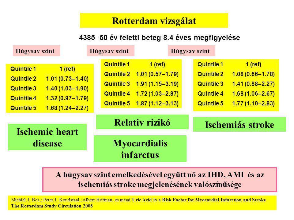 Quintile 11 (ref) Quintile 21.01 (0.73–1.40) Quintile 31.40 (1.03–1.90) Quintile 41.32 (0.97–1.79) Quintile 51.68 (1.24–2.27) Quintile 11 (ref) Quintile 21.01 (0.57–1.79) Quintile 31.91 (1.15–3.19) Quintile 41.72 (1.03–2.87) Quintile 51.87 (1.12–3.13) Rotterdam vizsgálat Relativ rizikó Ischemic heart disease A húgysav szint emelkedésével együtt nő az IHD, AMI és az ischemiás stroke megjelenésének valószínűsége Húgysav szint Quintile 11 (ref) Quintile 21.08 (0.66–1.78) Quintile 31.41 (0.88–2.27) Quintile 41.68 (1.06–2.67) Quintile 51.77 (1.10–2.83) Myocardialis infarctus Ischemiás stroke Húgysav szint Michiel J.