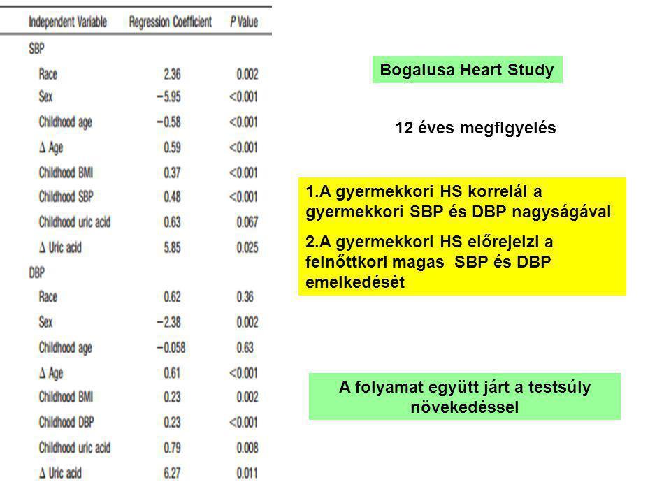 Bogalusa Heart Study 1.A gyermekkori HS korrelál a gyermekkori SBP és DBP nagyságával 2.A gyermekkori HS előrejelzi a felnőttkori magas SBP és DBP emelkedését 12 éves megfigyelés A folyamat együtt járt a testsúly növekedéssel