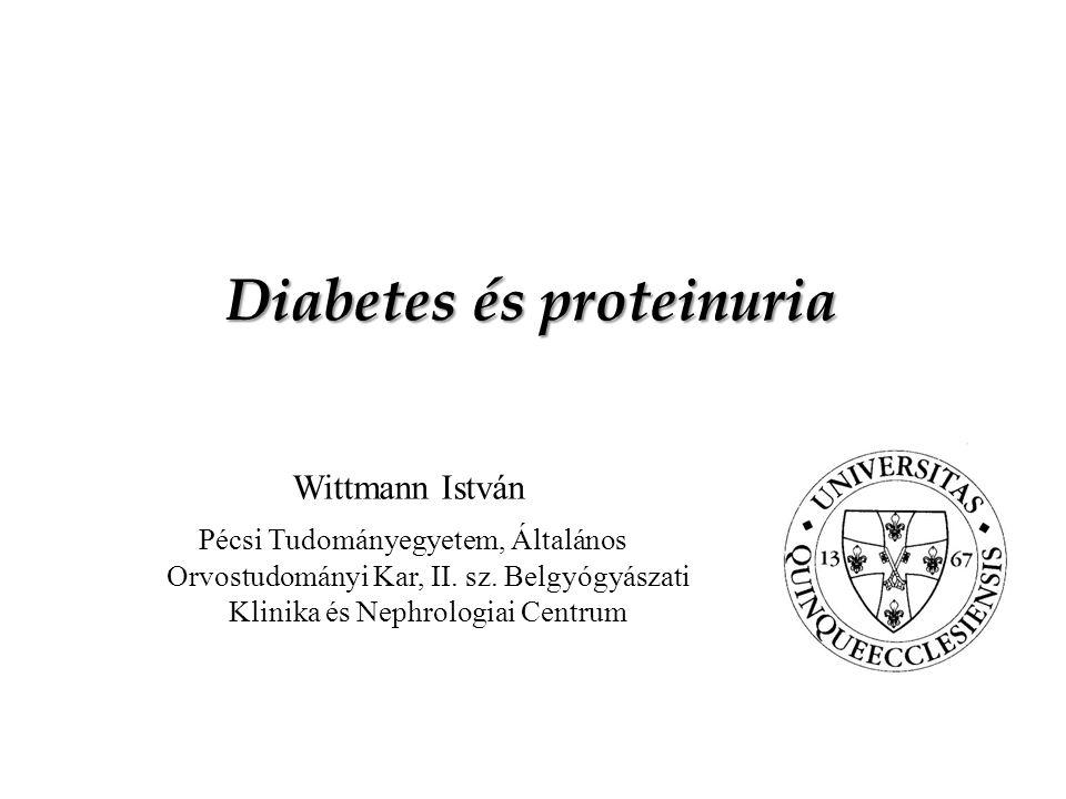 A mikroalbuminuria definíciója II Albumin/kreatinin (mg/mmol) Albuminuria NőFérfi Norm.<3,5<2,5 Mikro.3,5-352,5-25 Makro.>35>25 3-6 hónapon belül történő 3 mérésből kettő pozítív = mikroalbuminuria