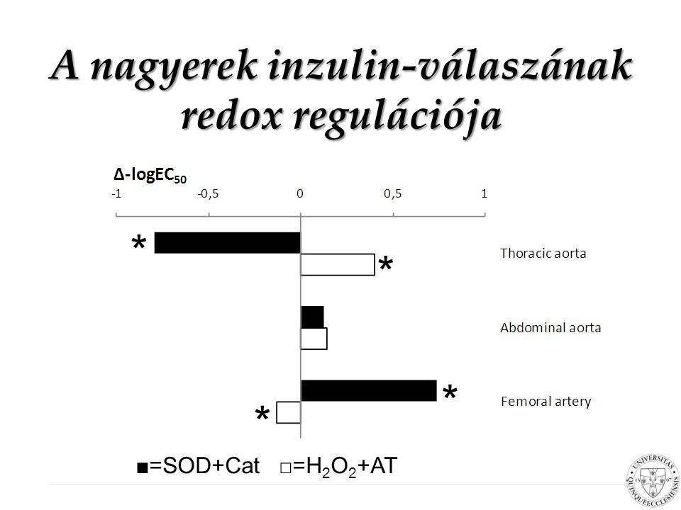 Redox szabályozás hatása az inzulin kiváltotta vazorelaxációra