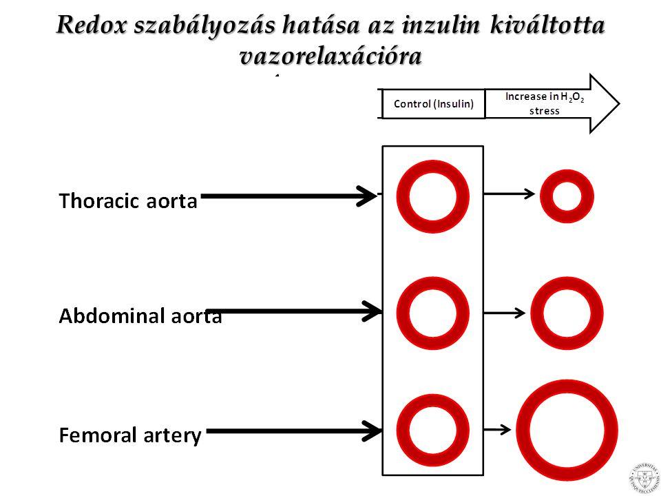 Diabetes mellitusban Oxidatív stressz miatt inzulinra – Centrális erekben csökkenő – Perifériásan erekben növekvő vazorelaxáció Következmény: HYPERFILTRÁCIÓ