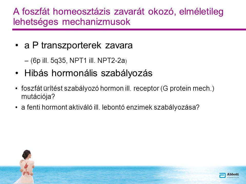 A foszfát homeosztázis zavarát okozó, elméletileg lehetséges mechanizmusok a P transzporterek zavara –(6p ill. 5q35, NPT1 ill. NPT2-2a ) Hibás hormoná
