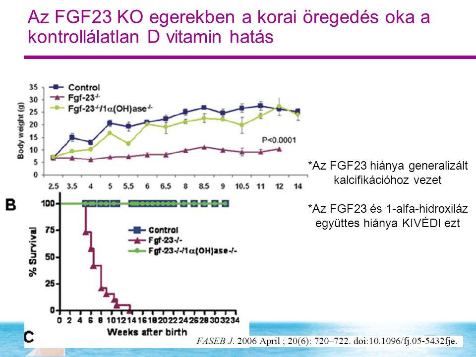 *Az FGF23 hiánya generalizált kalcifikációhoz vezet *Az FGF23 és 1-alfa-hidroxiláz együttes hiánya KIVÉDI ezt Az FGF23 KO egerekben a korai öregedés oka a kontrollálatlan D vitamin hatás
