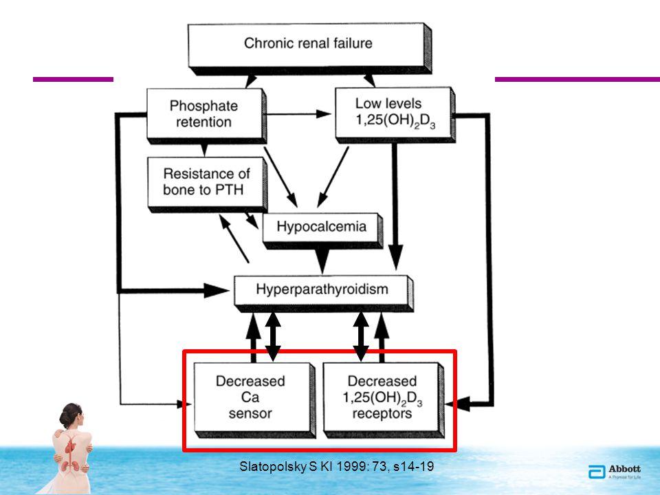 Vázlat 1.Az uremias szekunder hyperparathyreosis pathomechanizmusa 2.Új felfedezések a foszfát homeosztázis regulációjával kapcsolatban 3.Az uremiás metabolikus csont és endokrin anyagcsere zavar (SHPTH) lehetséges szövődményei Csont Cardiovascularis Egyéb szövődmények (anemia, infectiók, D vitamin hiány és következményei) 4.Terápiás opciók 5.A szelektív D vitamin receptor aktiváció további pozitív hatásai