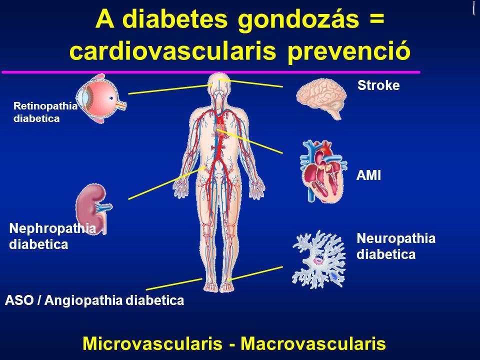 Retinopathia diabetica Nephropathia diabetica AMI Stroke Neuropathia diabetica A diabetes gondozás = cardiovascularis prevenció Microvascularis - Macr