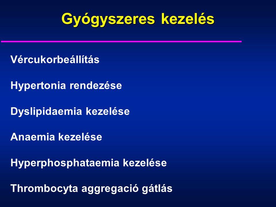 Vércukorbeállítás Hypertonia rendezése Dyslipidaemia kezelése Anaemia kezelése Hyperphosphataemia kezelése Thrombocyta aggregació gátlás Gyógyszeres k