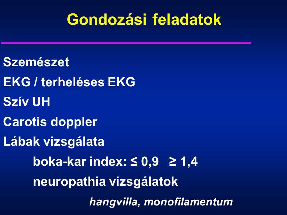 Szemészet EKG / terheléses EKG Szív UH Carotis doppler Lábak vizsgálata boka-kar index: ≤ 0,9 ≥ 1,4 neuropathia vizsgálatok hangvilla, monofilamentum