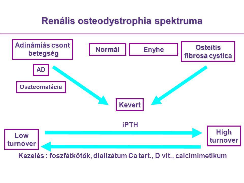 A magyarországi krónikusan dializált veseelégtelen betegek kalcium-foszfor anyagcseréjének felmérése Beavatkozással nem járó, multicentrikus, nyílt, retrospektív, kohort, megfigyeléses tudományos vizsgálat.