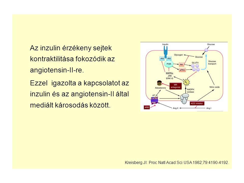 Az inzulin érzékeny sejtek kontraktilitása fokozódik az angiotensin-II-re. Ezzel igazolta a kapcsolatot az inzulin és az angiotensin-II által mediált
