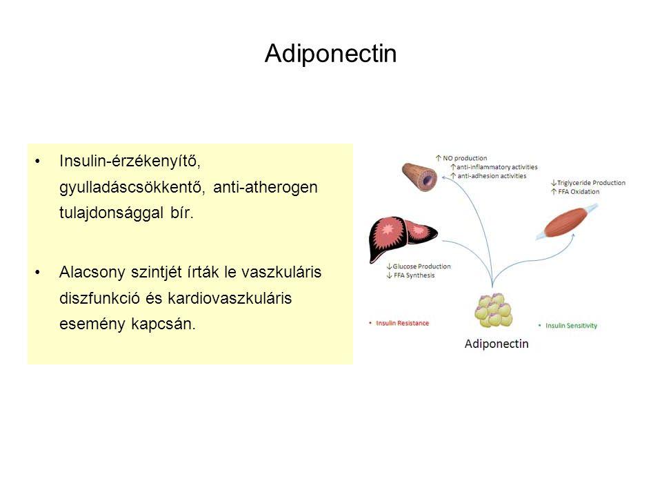Adiponectin Insulin-érzékenyítő, gyulladáscsökkentő, anti-atherogen tulajdonsággal bír. Alacsony szintjét írták le vaszkuláris diszfunkció és kardiova