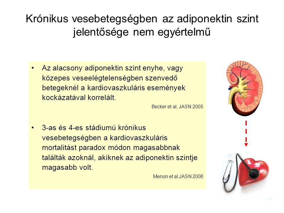 Krónikus vesebetegségben az adiponektin szint jelentősége nem egyértelmű Az alacsony adiponektin szint enyhe, vagy közepes veseelégtelenségben szenved