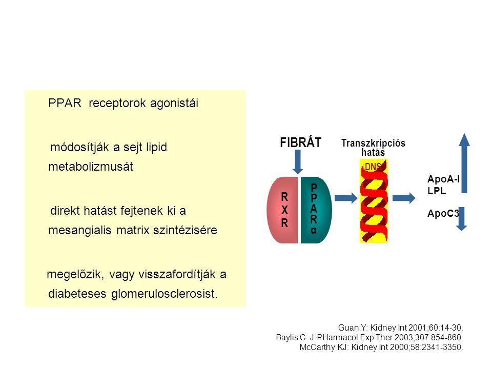 PPAR receptorok agonistái módosítják a sejt lipid metabolizmusát direkt hatást fejtenek ki a mesangialis matrix szintézisére megelőzik, vagy visszafor